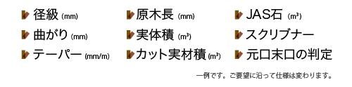 ログスキャナ計測項目(・径級(mm)・原木長(mm)・JAS石(m3)・曲がり(mm)・実体積(m3)・スクリブナー・テーパー(mm/m)・カット実材積(m3)・元口末口の判定
