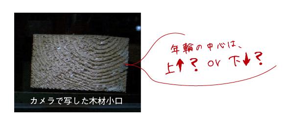 カメラで写した木材小口(年輪の中心は上↑?or下↓?)