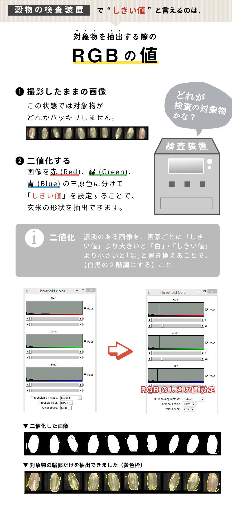 【穀物の検査装置】でしきい値と言えるのは、対象物を抽出する際のRGBの値 どれが検査の対象物かな? 画像を赤 (Red)、緑 (Green)、青 (Blue)の三原色に分けて「しきい値」を設定することで、玄米の形状を抽出できます。(二値化とは、濃淡のある画像を、画素ごとに「しきい値」より大きいと「白」・「しきい値」より小さいと「黒」と置き換えることで、【白黒の2階調にする】こと)